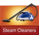 woman cleaning rug with ladybug steam cleaner
