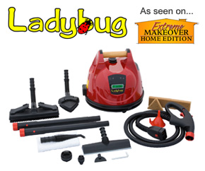 ladybug steam cleaners with accessories